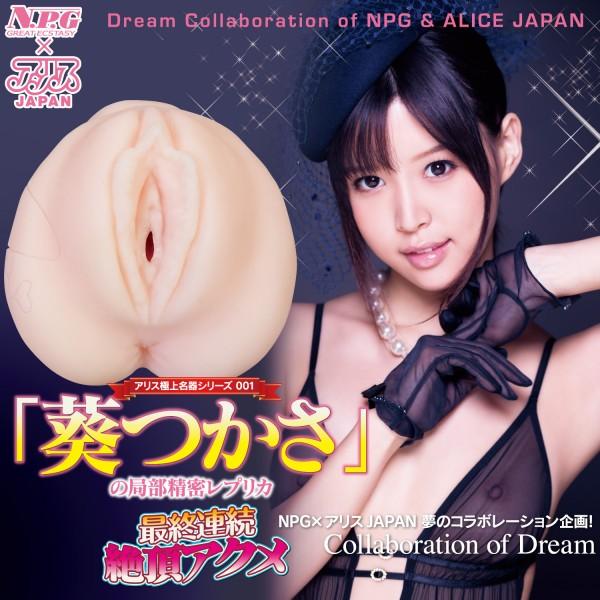 NPG-Meiki-Acme-Hole-Tsukasa-Aoi4