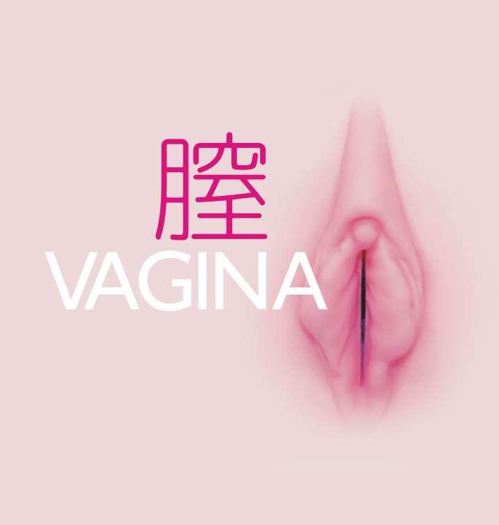 Vagina Pussy Onaholes Masturbator Sextoys Japan Sexspielzeug Lustmuschi